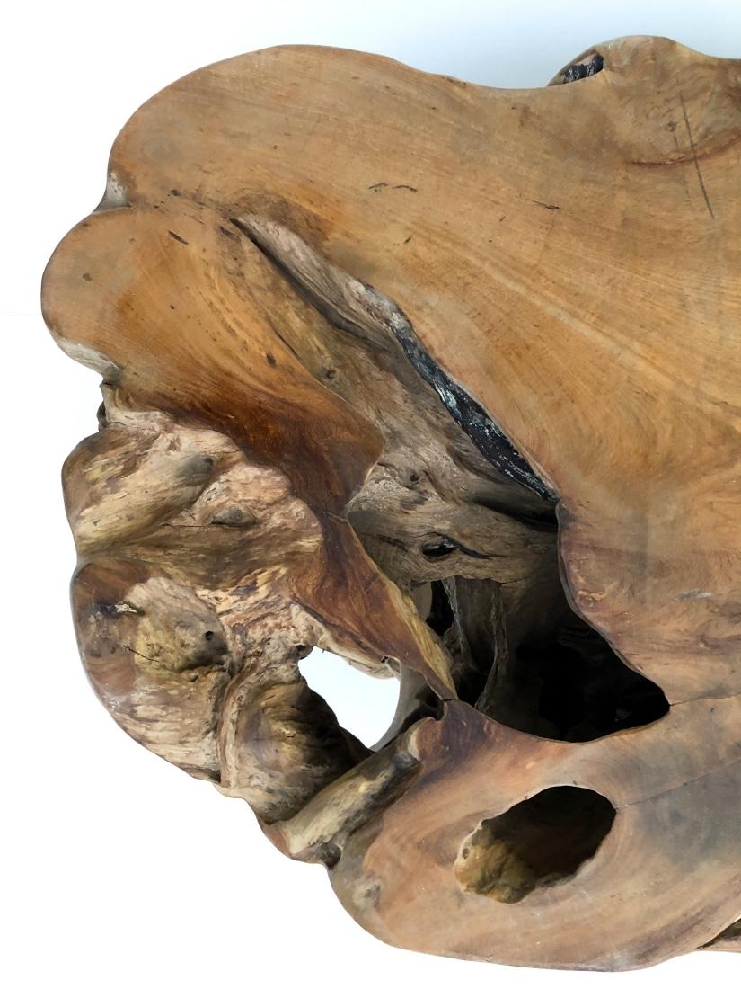 ława z drzewa egzotycznego